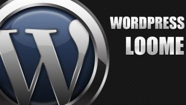 不用任何插件实现WordPress文章点击数
